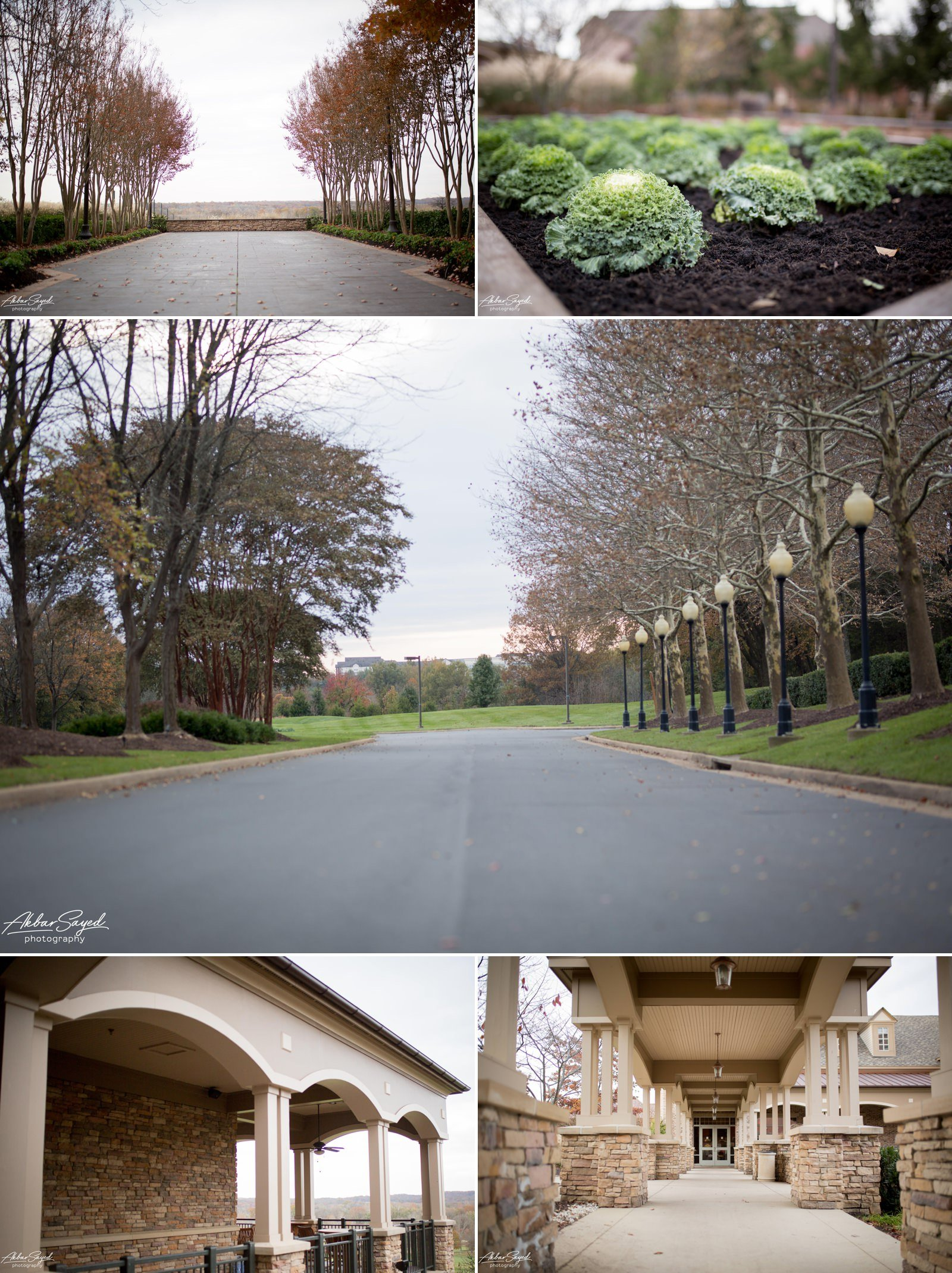 A collage of photographs showing the outdoor area of Lansdowne Resort Wedding Venue in Leesburg, Virginia.
